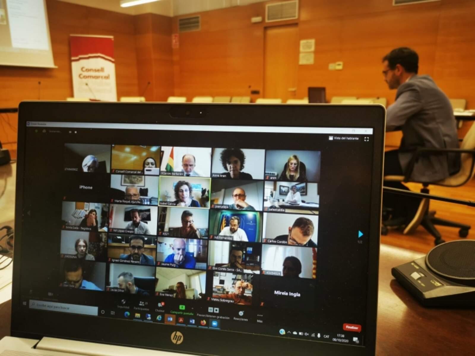 La sessió del Consell d'alcaldies s'ha desenvolupat en format virtual