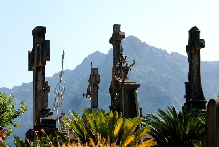 Detall del cementiri de Terrassa  | Josep Maria Escoda